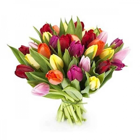 tulipanes-multicolor-ramo