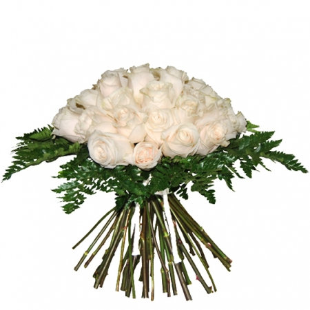 rosas-blancas-composición