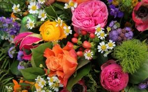 index-flowers