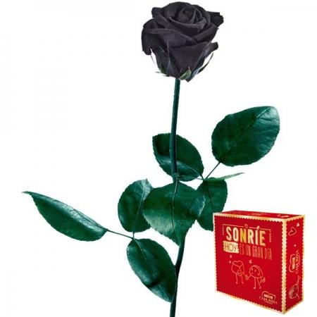 rosa negra preservada bombones
