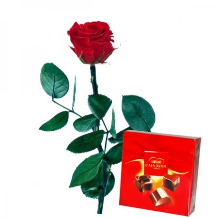 rosa roja preservada y nestle