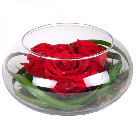 rosas amor rojas