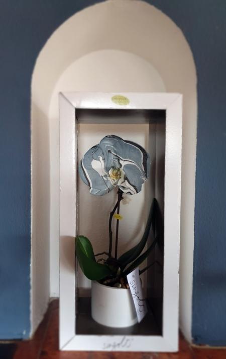 orquidearte azul caja