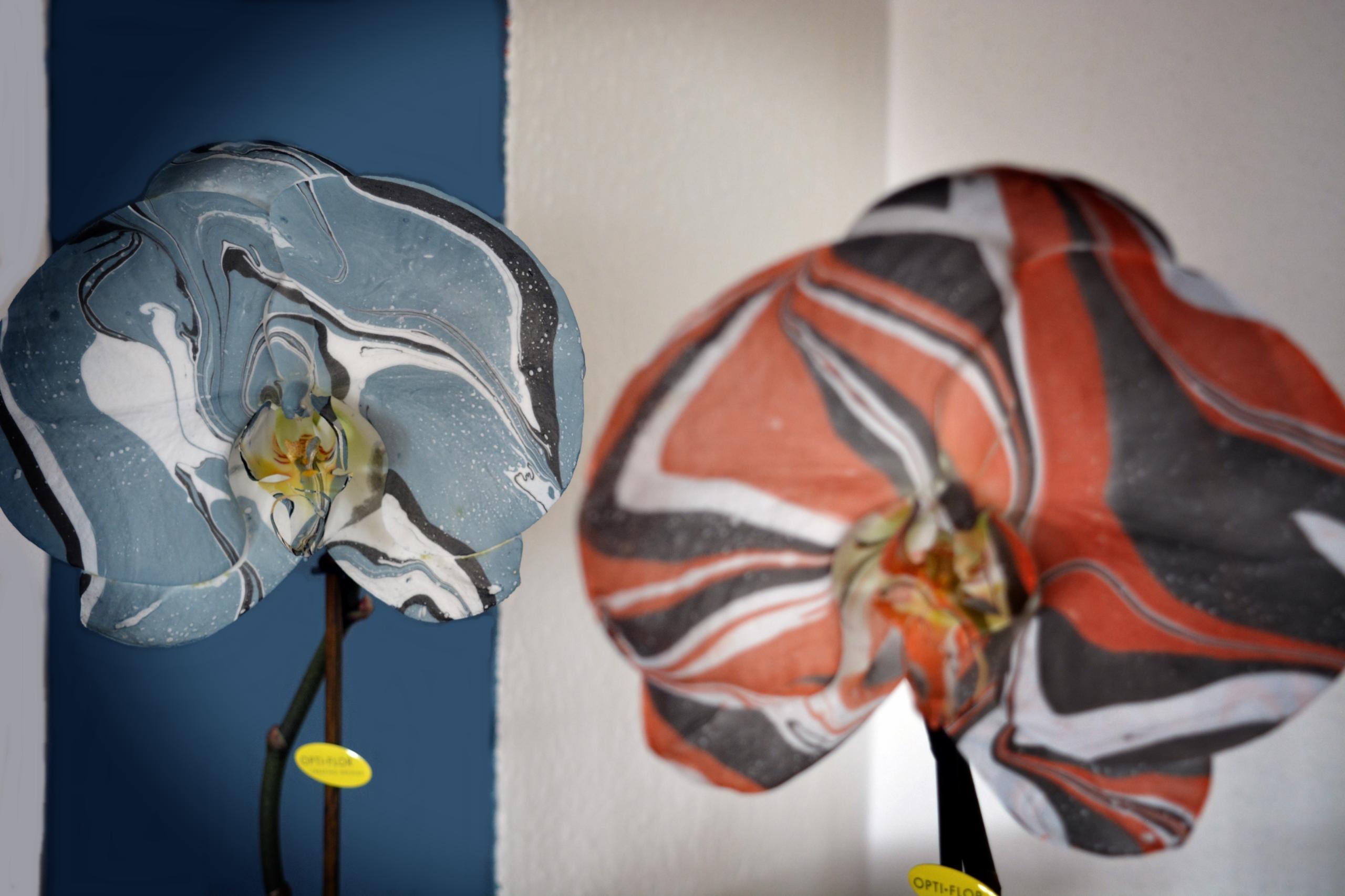 orquidearte azul naranja flor