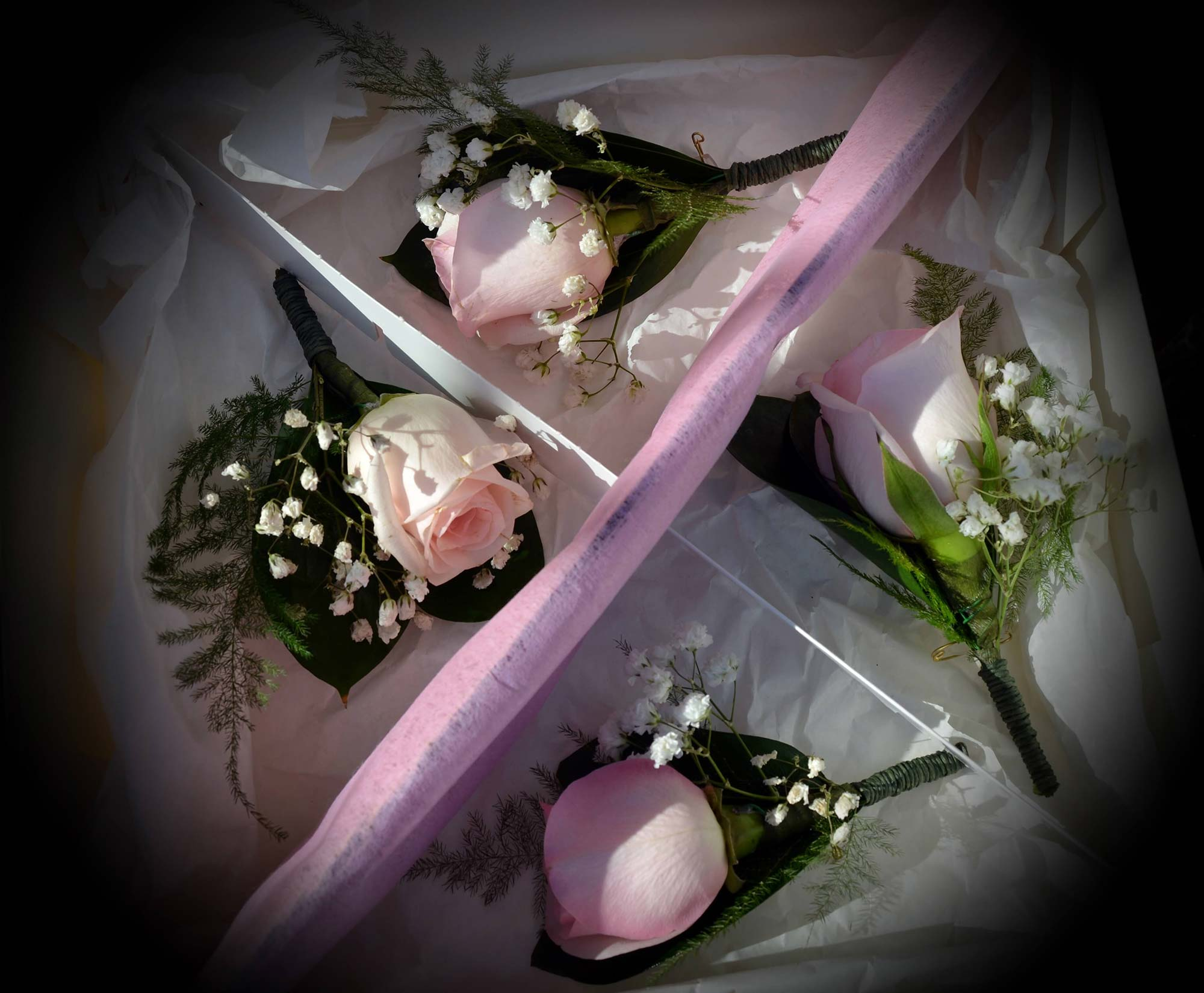 prendido de novio y padrinos. Rosas rosas