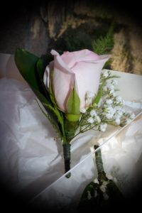 rosa rosa para novio
