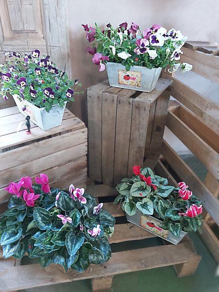 jardineras invierno