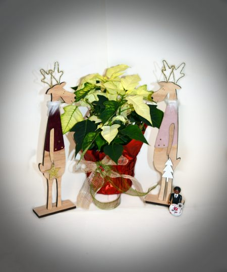 flor_de_pascua-renos_decoración
